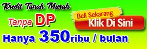 banner 300x100