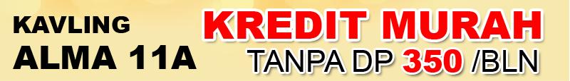banner 800x115